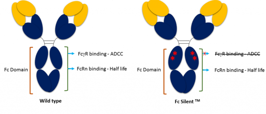 FC_silent_image